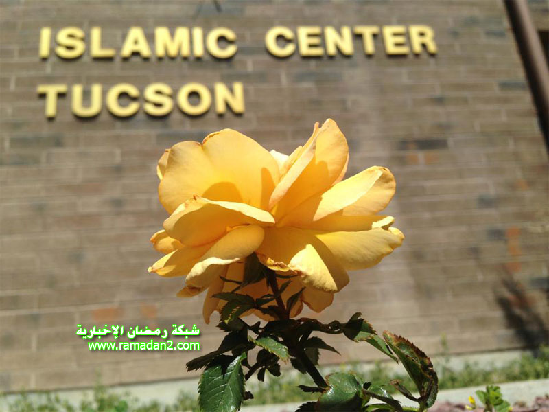 Islam-Center-USA