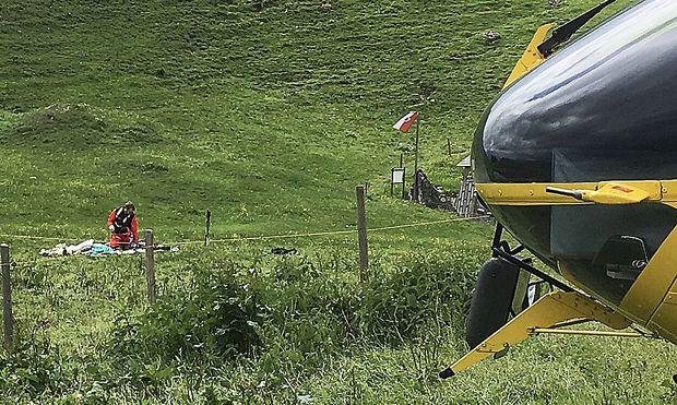 Kuh-Attacke-in-Tirol