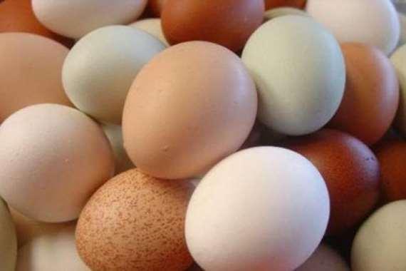 Scliecht-Eier