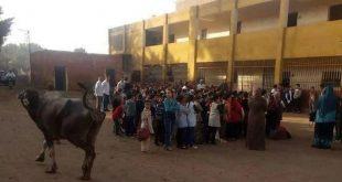 Koh-In-Schule