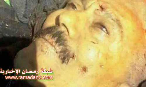 saleh-dead