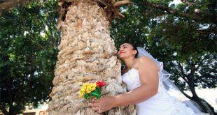 Baum-Heiraten-Frau