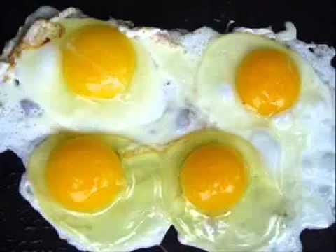 plastic-eggs