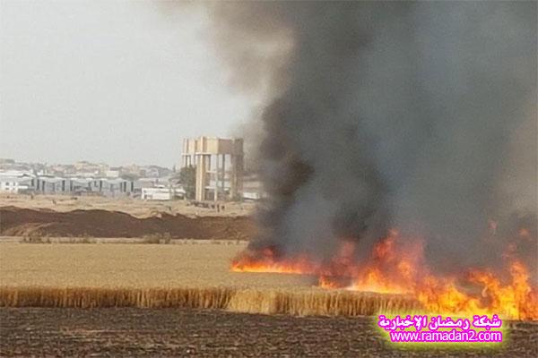 MAIN_Kite-in-Gaza-1