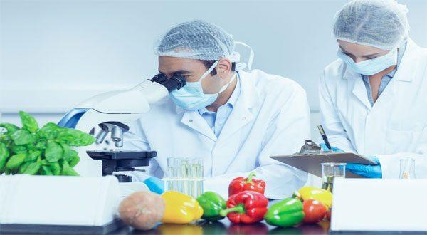 وجدوا الجين المفقود في النباتات.. علماء أمريكان يتوصلون لطريقة رخيصة التكلفة لتحديد مسببات الأمراض بدقة عالية فى جسم الأنسان